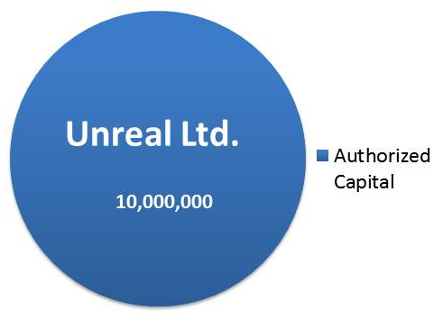 Image with example of Authorized Capital